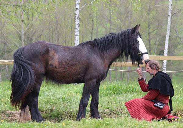 Cassy cheval parc Salva Terra