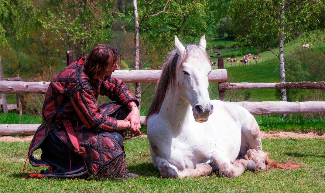 Dressage de cheval au moyen âge